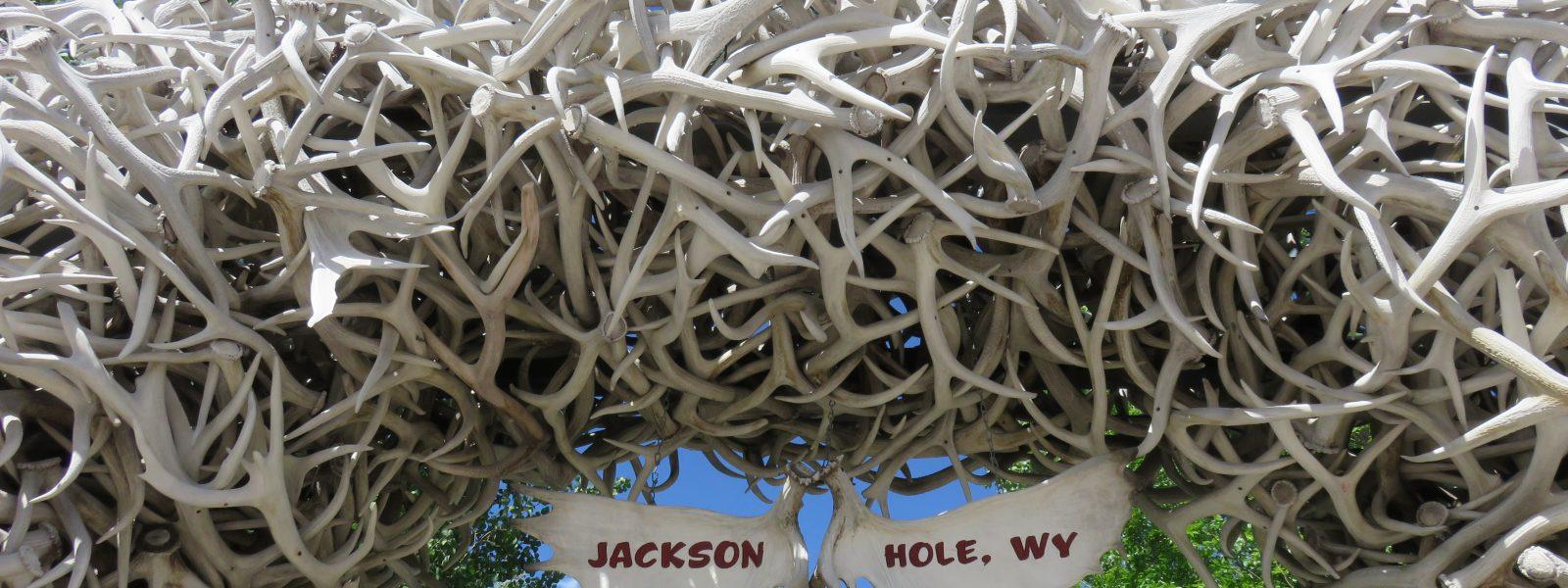 Dag 20/21 – Recap voor 3 dagen Yellowstone