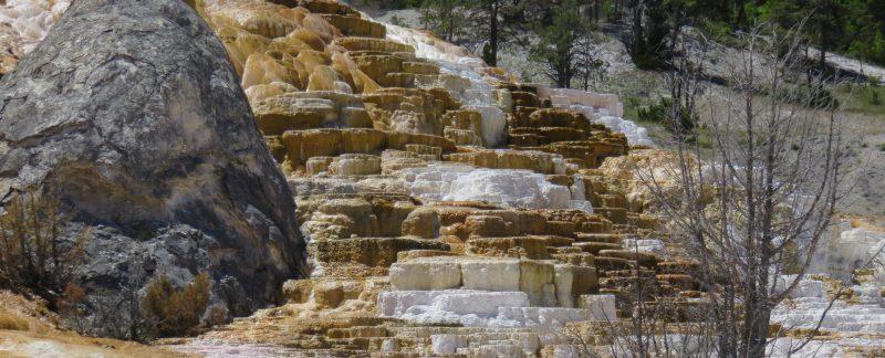 Mammoth - Yellowstone